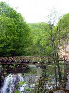 Мост в Бэиле Олэнешть