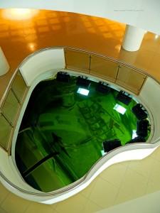 Дельта Дуная Музей естественной истории